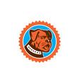 Bulldog Dog Mongrel Head Mascot Rosette vector image vector image