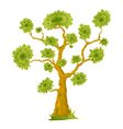 Cartoon Bonsai Tree vector image vector image