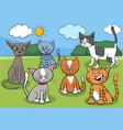 cats group in park cartoon vector image vector image