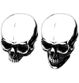 Cool graphic detailed human skulls set vector image vector image