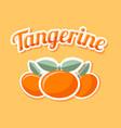 retro tangerine on pale orange background vector image vector image