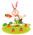 A rabbit at the farm with carrots vector image