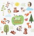 baby woodland animals design set vector image vector image