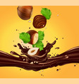 background for advertising chocolate hazelnuts vector image