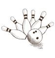 Bowling Pins and Ball vector image vector image