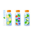 detox water in glass bottle with berries and vector image vector image