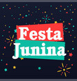 festa junina flags fireworks star black background vector image vector image