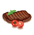 Grilled meat with greens isolated on white vector image vector image