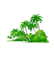 icon palm tree and bush vector image vector image