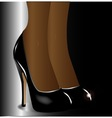 Legs with Stiletto Heals vector image vector image