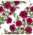 pattern with red peony flowers and green leaves vector image vector image