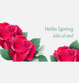 red roses card realistic beautiful floral decor vector image vector image