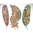 Set feather vector image