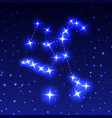 the constellation of hercules in the night starry vector image vector image