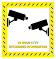 24 Hour CCTV Recording vector image vector image