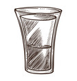alcohol drink vodka in glass tequila or sambuca vector image vector image