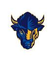 american bison head retro vector image vector image