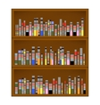 Books are on the Bookshelf vector image vector image