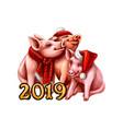 chinese zodiac sign year of pig happy chinese new vector image vector image