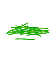 Delicious Fresh Green Beans on White Background vector image