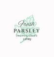 fresh parsley abstract sign symbol or logo vector image vector image