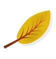 yellow autumn leaf icon realistic style vector image