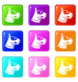 bull terrier dog icons 9 set vector image vector image