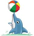 cute dolphin cartoon playing ball vector image vector image
