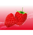 delicious juicy raspberry in spray of juice vector image vector image