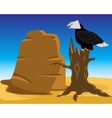 Desert and eagle on tree vector image vector image