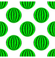 fresh ripe green watermelon vector image vector image
