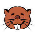 head of beaver icon cartoon vector image