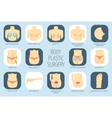 Plastic surgery body icons Flat design vector image vector image