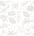 Seamless pattern with spices and herbs on white vector image
