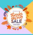 thanksgiving autumn fall sale banner shopping vector image