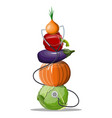 various vegetables with stethoscope vector image vector image