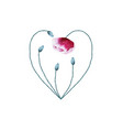 watercolor poppy flower heart on white background vector image vector image