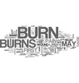 what to do in case of burns text word cloud vector image vector image