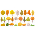 yellow autumn trees colorful garden tree vector image