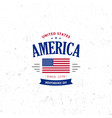 united states of north america logo vintage vector image
